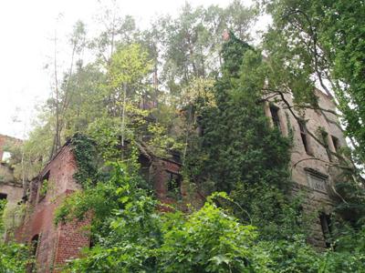 Urban Exploring for beginners: Beelitz-Heilstätten, Brandenberg