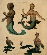 What's missing in your life? Mermaids.